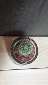 Glassbottle-A-G-006